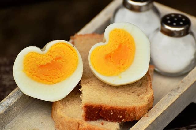 protein ve vejcích