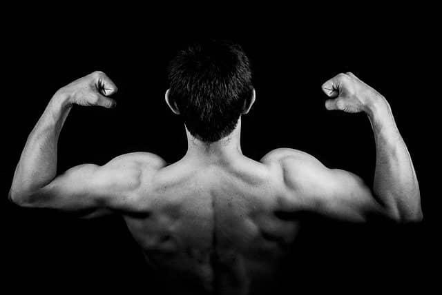 Pravidelná konzumace kotvičníku zemního vede ke zvyšování svalové hmoty